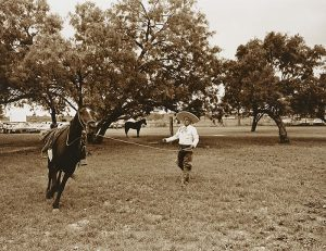 A sepia-toned photograph depicts a grassy field with a person wearing a wide-brimmed hat standing in the center holding a lasso rope tethered to a running horse mid-movement. In the background a horse stands still beneath a cluster of trees.